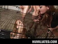 Beautiful caged and bound babe covered in cum!