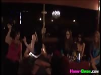 Amateurs enjoy the horny stripper