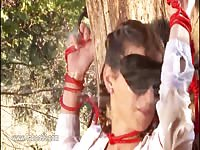 Sexy babe tied and blindfolded on the tree